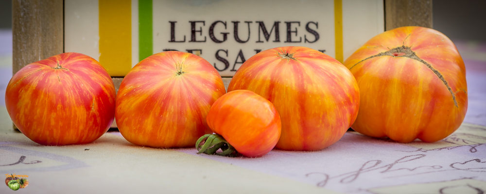 tomates divers 10 octobre 2014